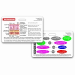 Burn Classifications & Parkland Formula Badge Card - Horizontal